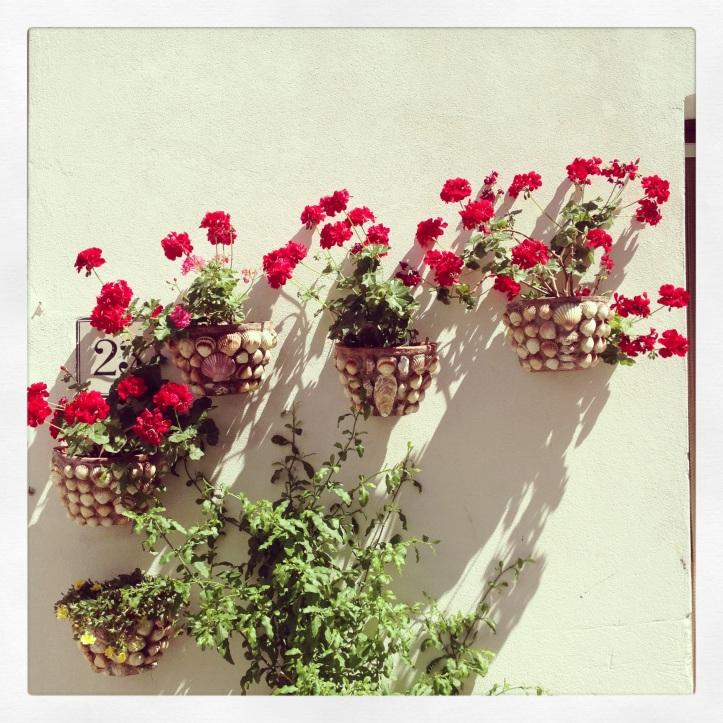 Gek op bloemen!