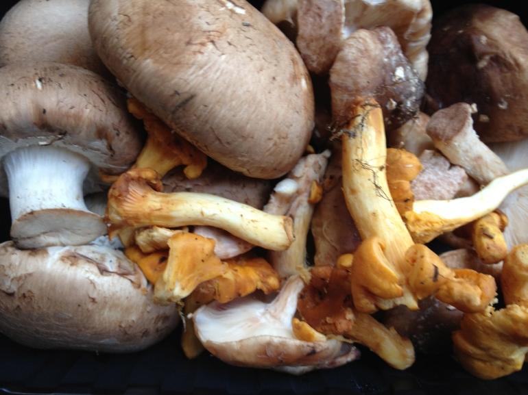 Pasta met paddenstoelen