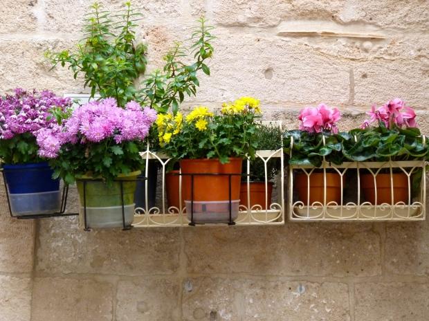 Bloemen in Puglia