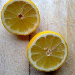 pers de citroen