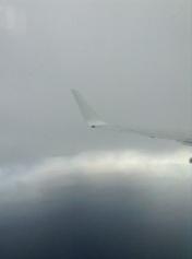 vlucht