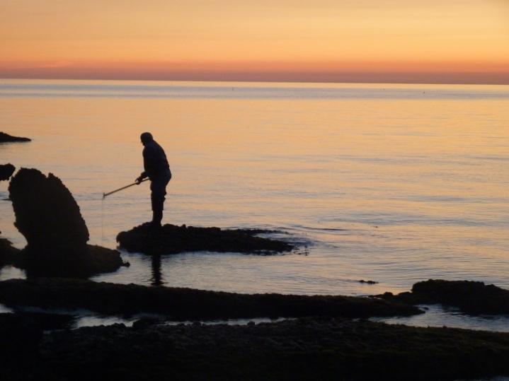 Vroege visser